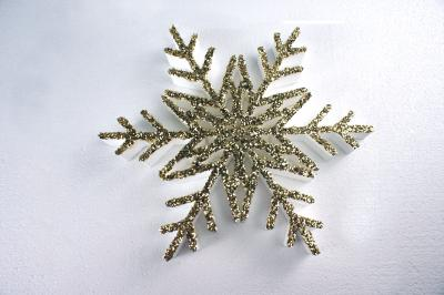 snowflakes-fm25-01-g